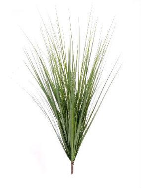 Grastoef