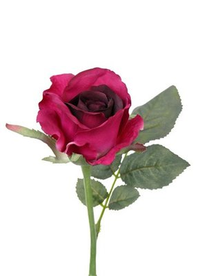 Roos Alice de luxe donker rood